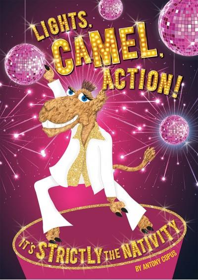 Image result for lights camel action